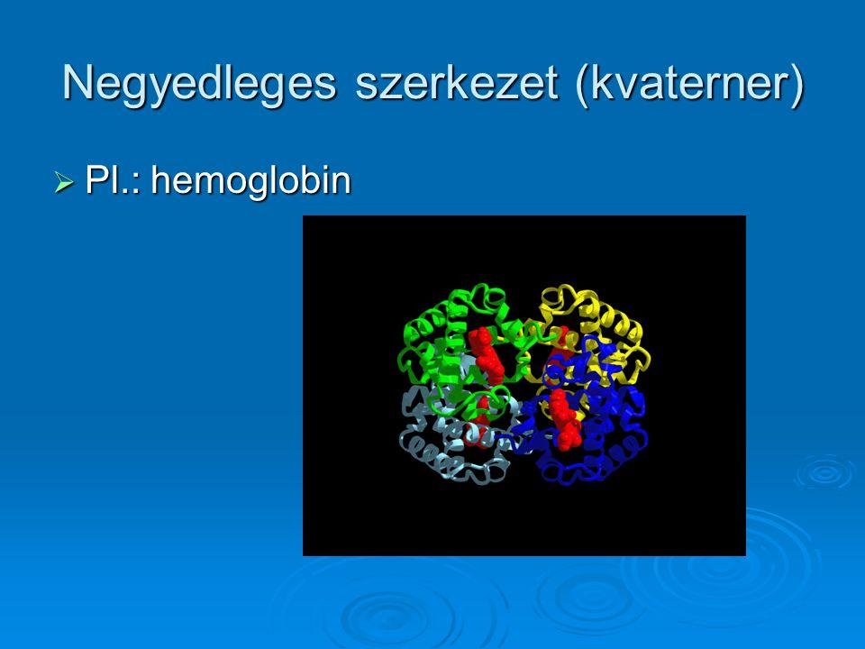 Negyedleges szerkezet (kvaterner)  Pl.: hemoglobin