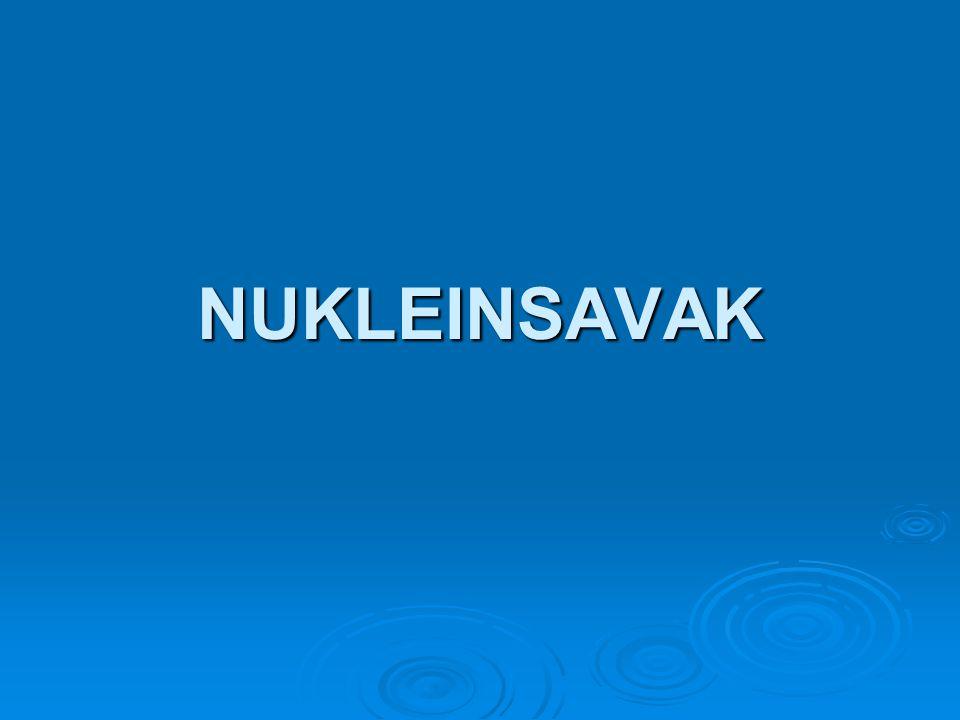 NUKLEINSAVAK