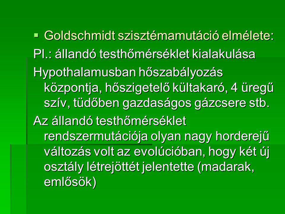  Goldschmidt szisztémamutáció elmélete: Pl.: állandó testhőmérséklet kialakulása Hypothalamusban hőszabályozás központja, hőszigetelő kültakaró, 4 üregű szív, tüdőben gazdaságos gázcsere stb.