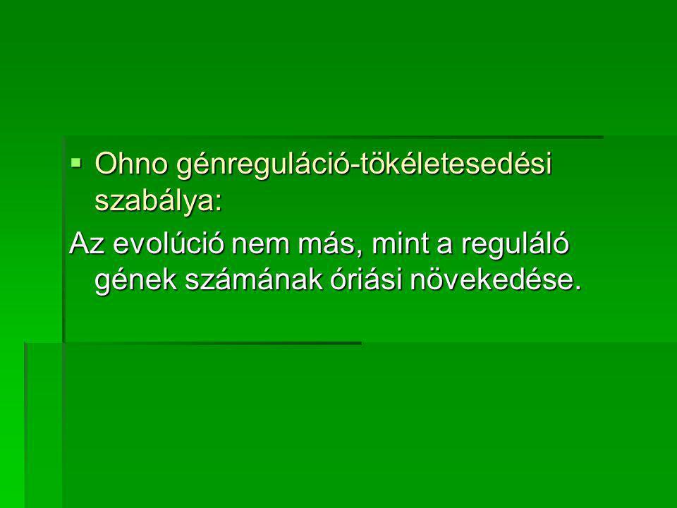  Ohno génreguláció-tökéletesedési szabálya: Az evolúció nem más, mint a reguláló gének számának óriási növekedése.