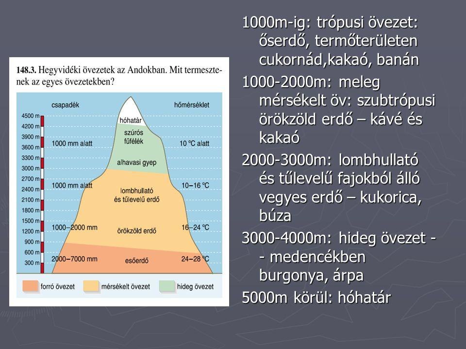 1000m-ig: trópusi övezet: őserdő, termőterületen cukornád,kakaó, banán 1000-2000m: meleg mérsékelt öv: szubtrópusi örökzöld erdő – kávé és kakaó 2000-