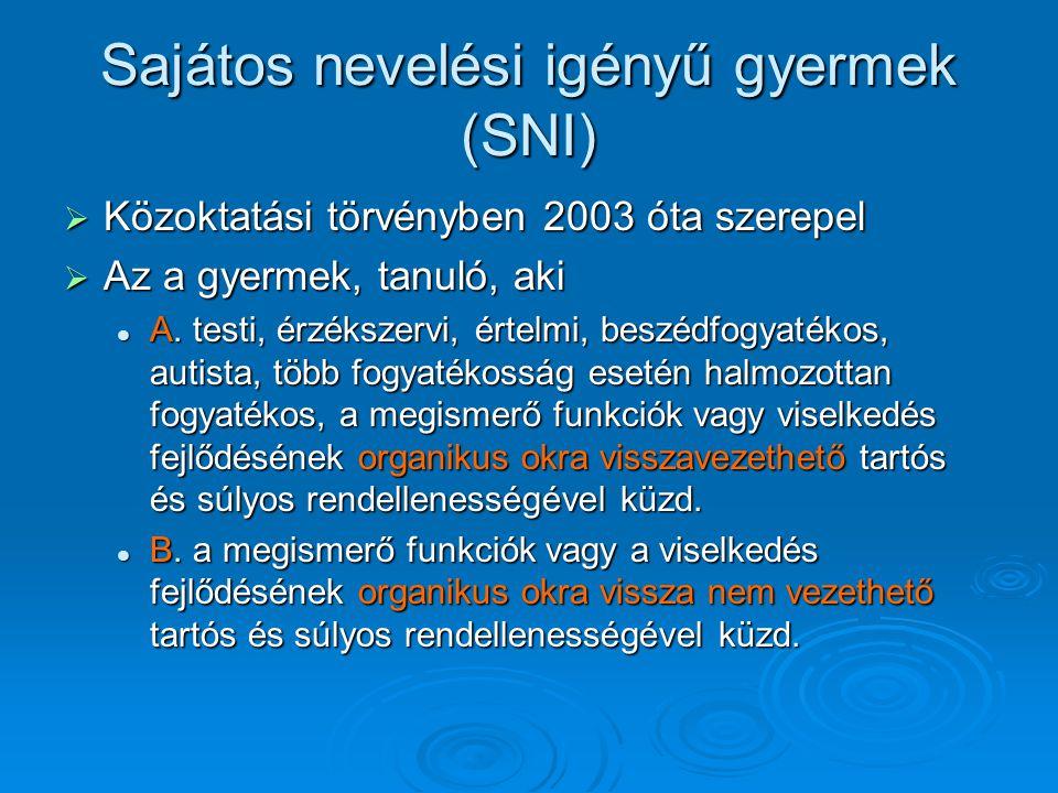 SNI csoportjai  Mozgássérültek  Látássérültek: vakok, gyengénlátók  Hallássérültek: siketek, nagyothallók  Értelmi fogyatékosok: - értelmileg akadályozottak, - értelmileg akadályozottak, - tanulásban akadályozottak - tanulásban akadályozottak - súlyos értelmi fogyatékosok - súlyos értelmi fogyatékosok  Beszédben akadályozottak: - beszéd-, hang- és nyelvi zavarok - beszéd-, hang- és nyelvi zavarok  Autizmus  Teljesítmény- és viselkedészavarok: - hiperkinetikus szindróma - hiperkinetikus szindróma - magatartás zavarok - magatartás zavarok