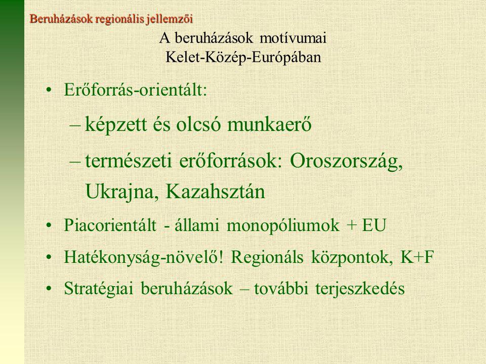 A beruházások motívumai Kelet-Közép-Európában Erőforrás-orientált: –képzett és olcsó munkaerő –természeti erőforrások: Oroszország, Ukrajna, Kazahsztán Piacorientált - állami monopóliumok + EU Hatékonyság-növelő.