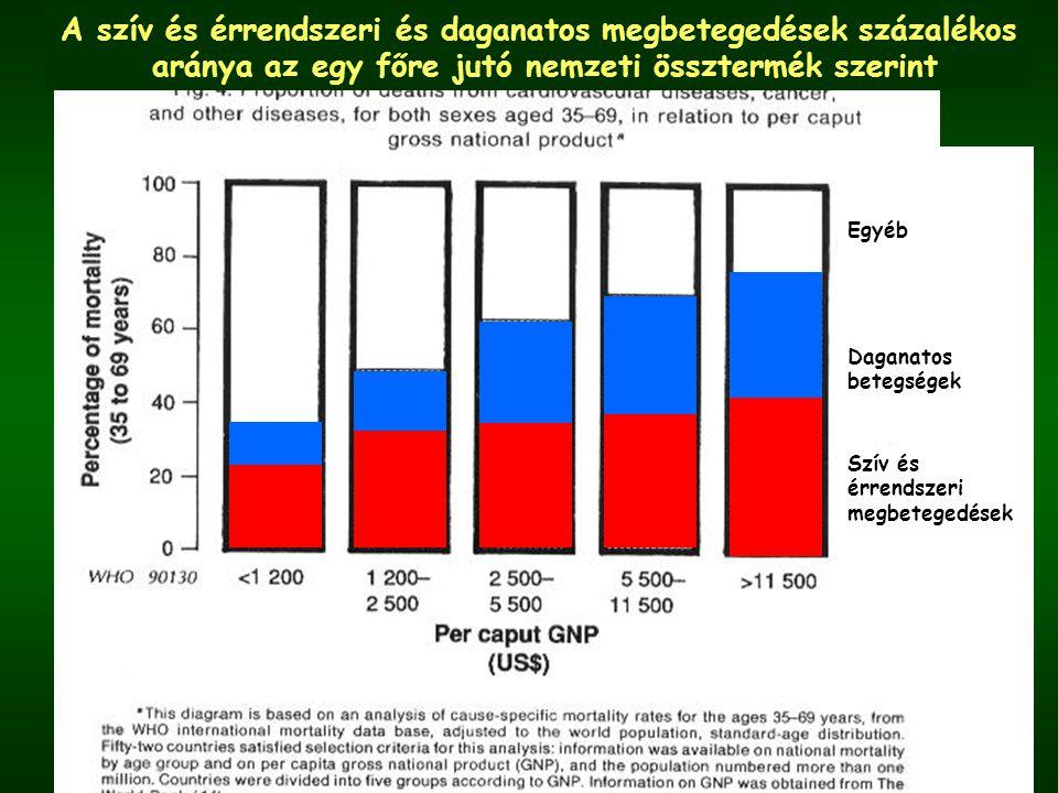 Egyéb Daganatos betegségek Szív és érrendszeri megbetegedések A szív és érrendszeri és daganatos megbetegedések százalékos aránya az egy főre jutó nemzeti össztermék szerint