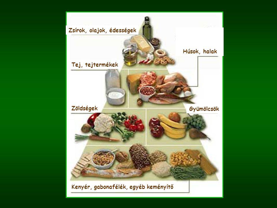 Zsírok, olajok, édességek Tej, tejtermékek Zöldségek Gyümölcsök Húsok, halak Kenyér, gabonafélék, egyéb keményítő