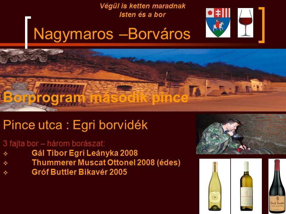 Nagymaros –Borváros Végül is ketten maradnak Isten és a bor Borprogram első pince Szamaras : Soproni borvidék 3 fajta bor – három borászat:  Fényes p