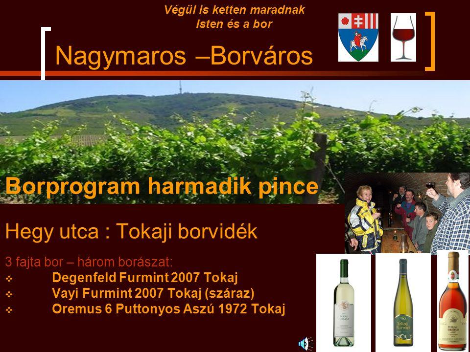 Nagymaros –Borváros Borprogram második pince Pince utca : Egri borvidék 3 fajta bor – három borászat:  Gál Tibor Egri Leányka 2008  Thummerer Muscat