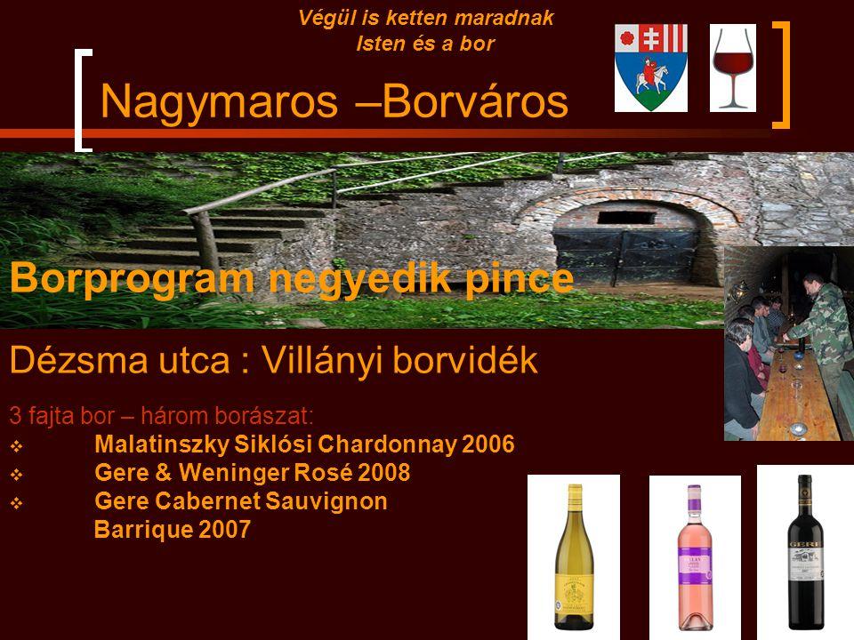 Nagymaros –Borváros Borprogram harmadik pince Hegy utca : Tokaji borvidék 3 fajta bor – három borászat:  Degenfeld Furmint 2007 Tokaj  Vayi Furmint