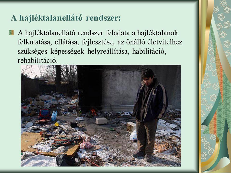 A hajléktalanellátó rendszer elemei: Utcai szociális munka: feladata az utcán élő hajléktalanok segítése, az ismeretlen hajléktalanok felderítése, a fizikai szükségletek kielégítése (élelmiszer, ruha, tisztálkodószerek, takarók, gyógyszer), alapvető ügyintézés (iratok pótlása, jövedelem szerzése, szociális ellátásokhoz való hozzájutás szervezése), információs segítségnyújtás (jogok, szociális ellátások, egyéb információk), majd lehetőség szerint szakellátásba továbbítás.