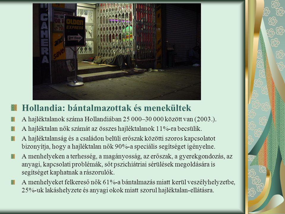 Hollandia: bántalmazottak és menekültek A hajléktalanok száma Hollandiában 25 000–30 000 között van (2003.).