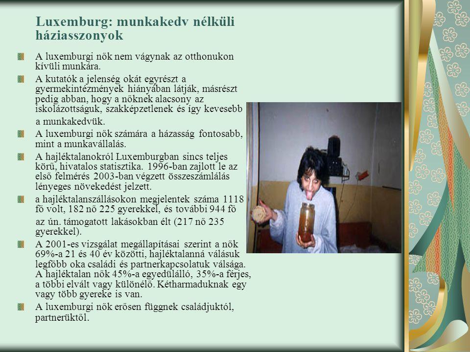 Luxemburg: munkakedv nélküli háziasszonyok A luxemburgi nők nem vágynak az otthonukon kívüli munkára.