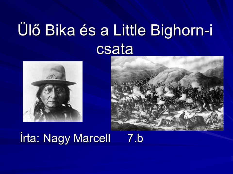 Ülő Bika és a Little Bighorn-i csata Írta: Nagy Marcell 7.b
