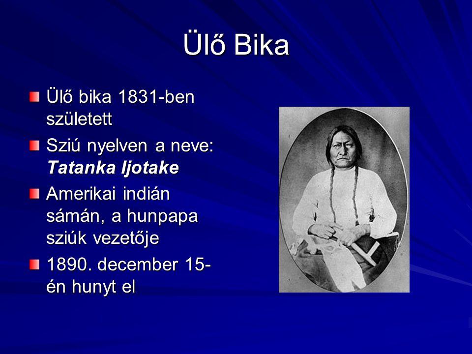 Ülő Bika Ülő bika 1831-ben született Sziú nyelven a neve: Tatanka Ijotake Amerikai indián sámán, a hunpapa sziúk vezetője 1890. december 15- én hunyt