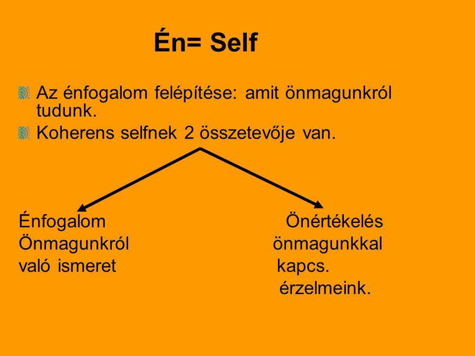 Én= Self Az énfogalom felépítése: amit önmagunkról tudunk.