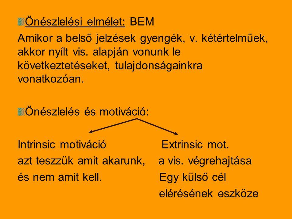 Önészlelési elmélet: BEM Amikor a belső jelzések gyengék, v.