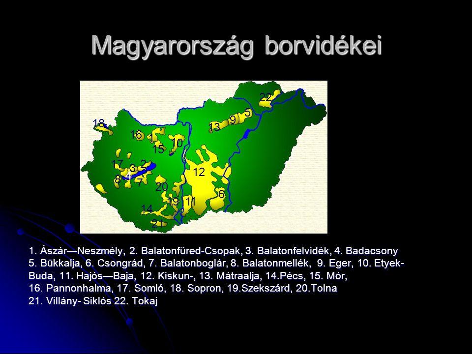 Magyarország borvidékei 1.Ászár—Neszmély, 2. Balatonfüred-Csopak, 3.