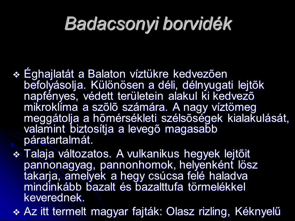 Badacsonyi borvidék  Éghajlatát a Balaton víztükre kedvezõen befolyásolja. Különösen a déli, délnyugati lejtõk napfényes, védett területein alakul ki