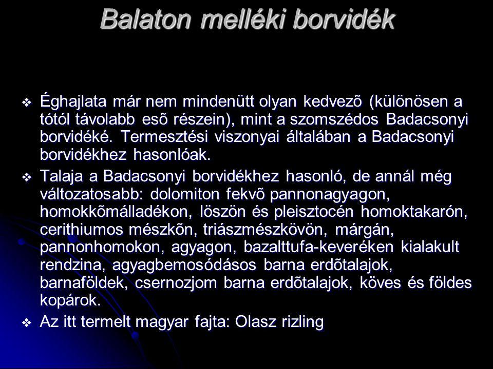 Balaton melléki borvidék  Éghajlata már nem mindenütt olyan kedvezõ (különösen a tótól távolabb esõ részein), mint a szomszédos Badacsonyi borvidéké.