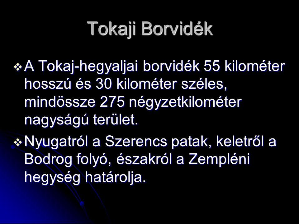 Tokaji Borvidék  A Tokaj-hegyaljai borvidék 55 kilométer hosszú és 30 kilométer széles, mindössze 275 négyzetkilométer nagyságú terület.  Nyugatról