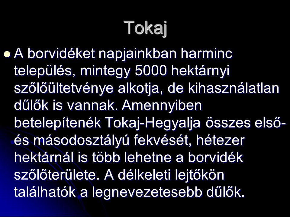 Tokaj A borvidéket napjainkban harminc település, mintegy 5000 hektárnyi szőlőültetvénye alkotja, de kihasználatlan dűlők is vannak. Amennyiben betele