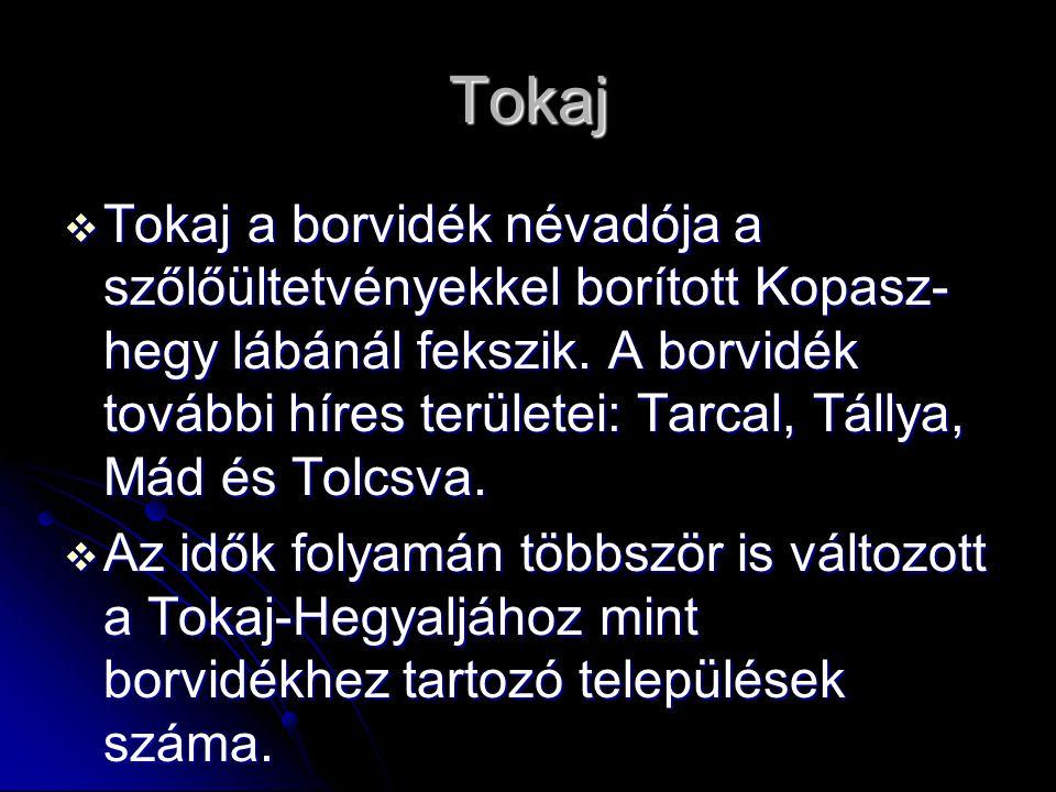 Tokaj  Tokaj a borvidék névadója a szőlőültetvényekkel borított Kopasz- hegy lábánál fekszik. A borvidék további híres területei: Tarcal, Tállya, Mád