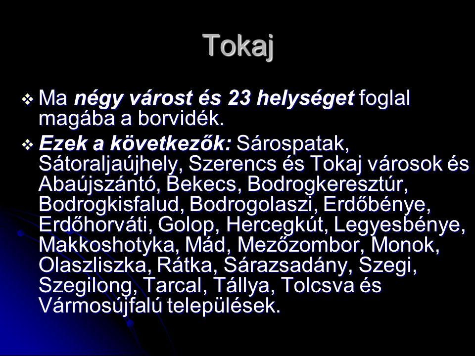 Tokaj  Ma négy várost és 23 helységet foglal magába a borvidék.  Ezek a következők: Sárospatak, Sátoraljaújhely, Szerencs és Tokaj városok és Abaújs