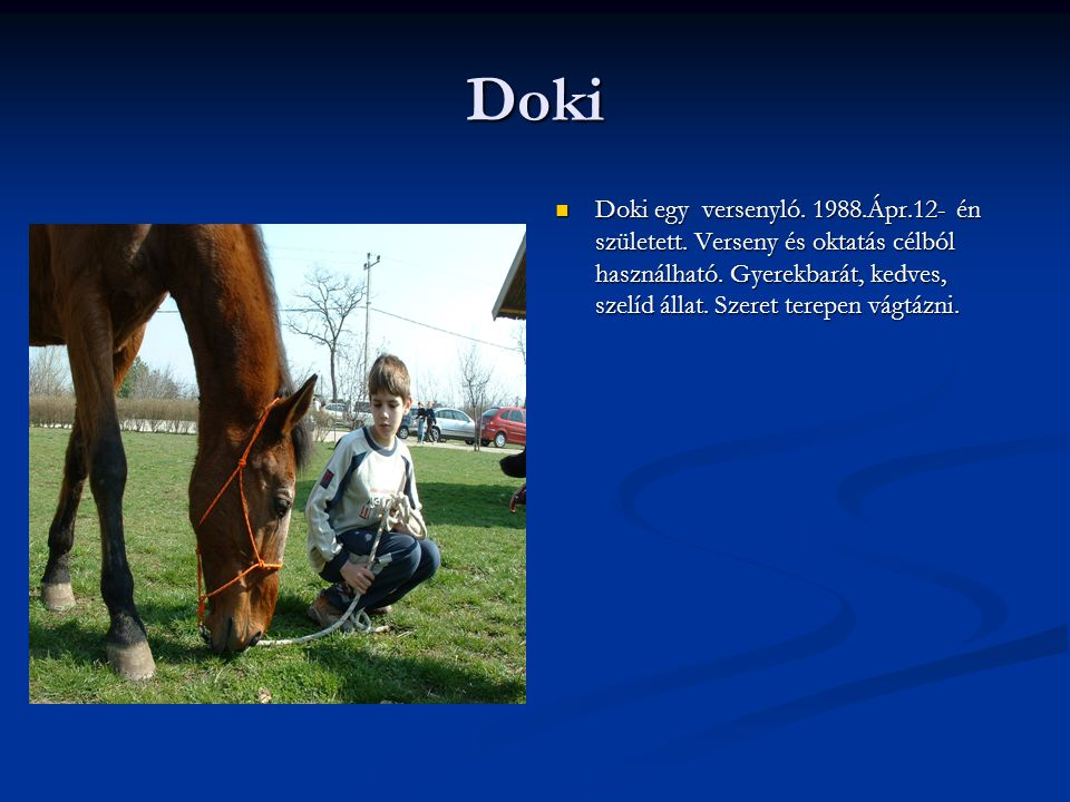 Doki Doki egy versenyló.1988.Ápr.12- én született.