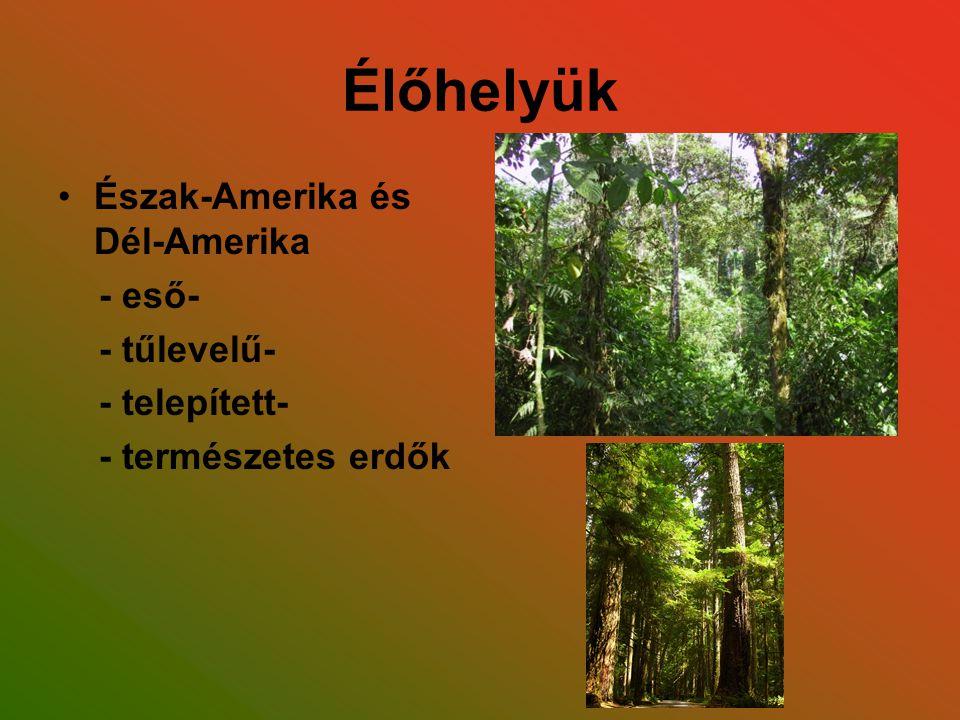 Élőhelyük Észak-Amerika és Dél-Amerika - eső- - tűlevelű- - telepített- - természetes erdők