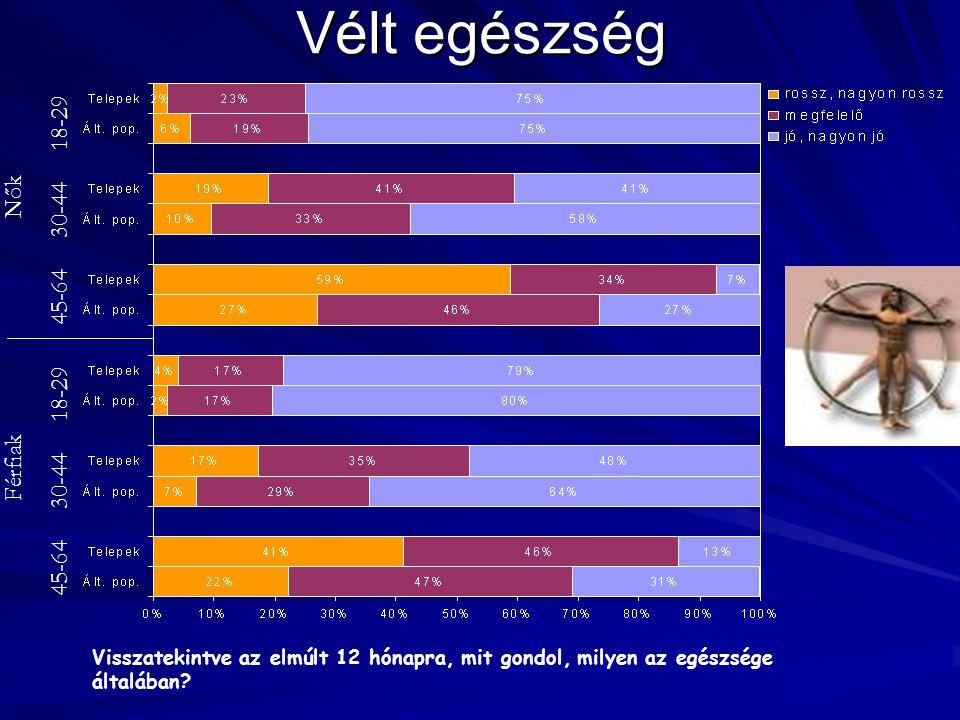 Vélt egészség Visszatekintve az elmúlt 12 hónapra, mit gondol, milyen az egészsége általában? Nők 45-64 30-44 18-29 Férfiak 45-64 30-44 18-29