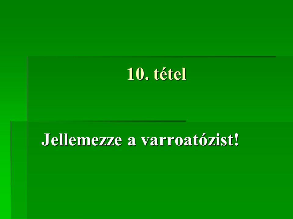 10. tétel Jellemezze a varroatózist!
