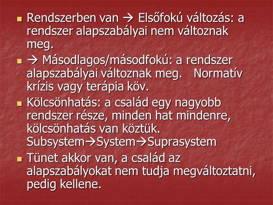 Technikák Genogram  Ábrák Genogram  Ábrák Gyurma  Réka esete Gyurma  Réka esete Szobor  Magatartás zav.