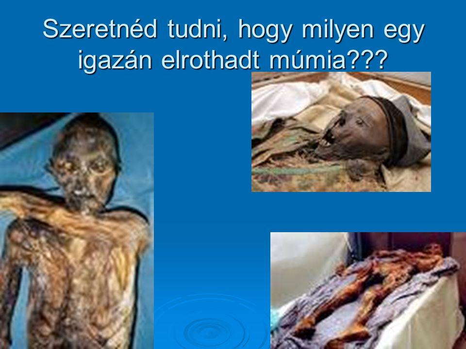 Szeretnéd tudni, hogy milyen egy igazán elrothadt múmia???