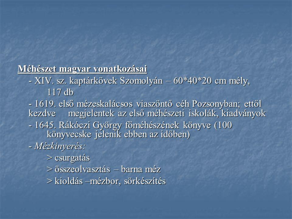 Méhészet magyar vonatkozásai - XIV. sz. kaptárkövek Szomolyán – 60*40*20 cm mély, 117 db - 1619. első mézeskalácsos viaszöntő céh Pozsonyban; ettől ke