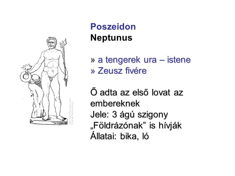 """Poszeidon Neptunus a tengerek ura – istene » a tengerek ura – istene » Zeusz fivére Ő adta az első lovat az embereknek Jele: 3 ágú szigony """"Földrázóna"""