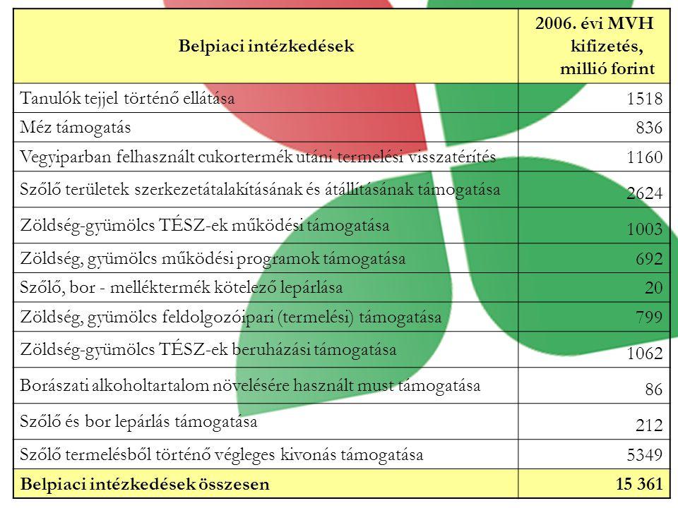 Belpiaci intézkedések 2006.