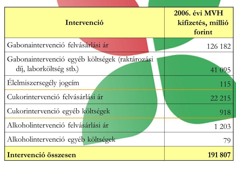 Intervenció 2006.