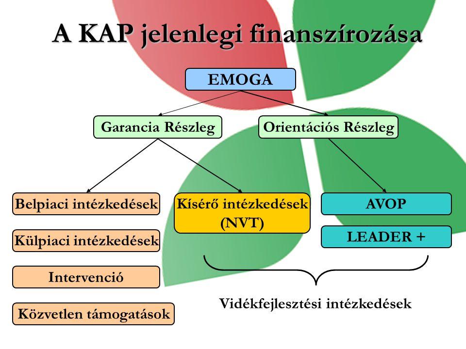 EMOGA Garancia RészlegOrientációs Részleg Belpiaci intézkedések Külpiaci intézkedések Intervenció Közvetlen támogatások Kísérő intézkedések (NVT) A KAP jelenlegi finanszírozása AVOP LEADER + Vidékfejlesztési intézkedések