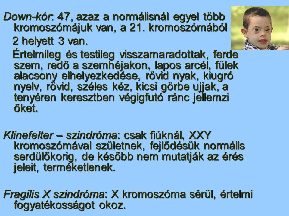 Down-kór: 47, azaz a normálisnál egyel több kromoszómájuk van, a 21. kromoszómából 2 helyett 3 van. 2 helyett 3 van. Értelmileg és testileg visszamara