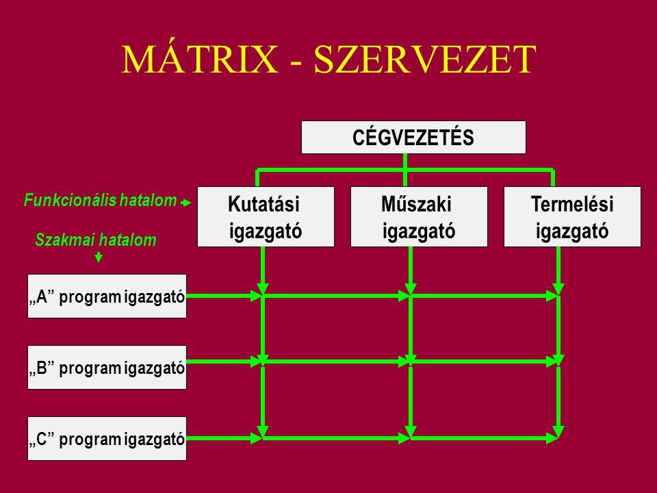"""MÁTRIX - SZERVEZET Kutatási igazgató Műszaki igazgató Termelési igazgató CÉGVEZETÉS """"A"""" program igazgató """"B"""" program igazgató """"C"""" program igazgató Fun"""