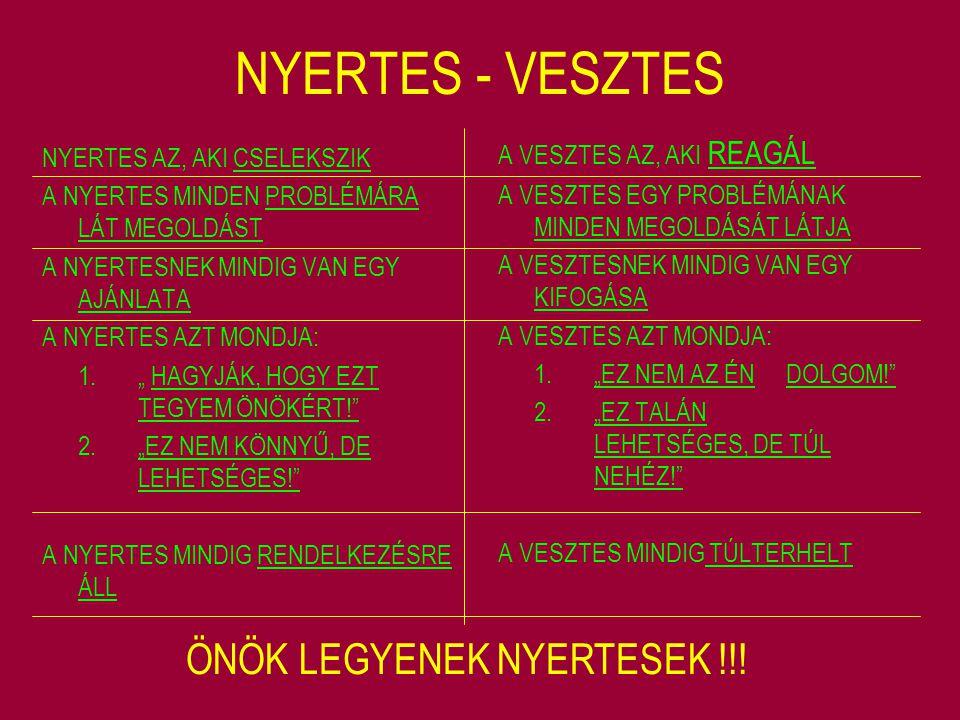 TENZORSZERVEZET VÁLLALAT VEZETÉS K+F KERESK.TERMELÉS I.