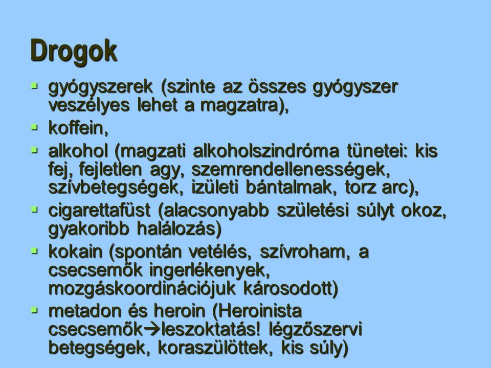 Drogok  gyógyszerek (szinte az összes gyógyszer veszélyes lehet a magzatra),  koffein,  alkohol (magzati alkoholszindróma tünetei: kis fej, fejletl