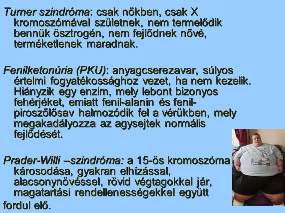 Kiegészítő!!! + ide tartozik az értelmi fogyatékosság is + Inteligencia +TÁBLÁZAT (nyomtatott!!!)