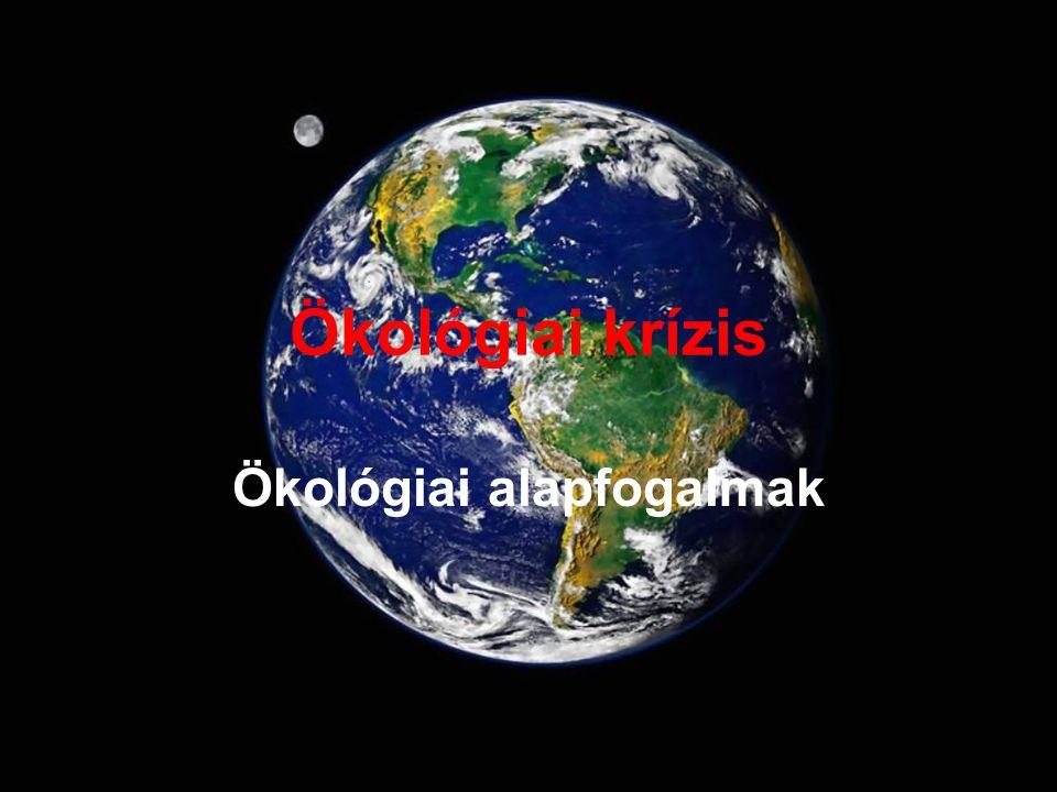 Ökológiai krízis Ökológiai alapfogalmak