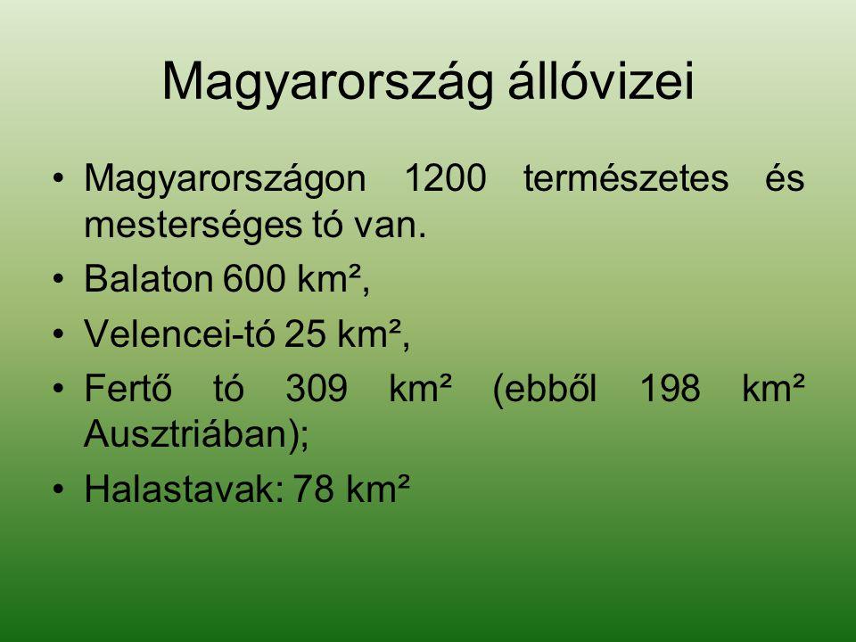 Magyarország állóvizei Magyarországon 1200 természetes és mesterséges tó van. Balaton 600 km², Velencei-tó 25 km², Fertő tó 309 km² (ebből 198 km² Aus