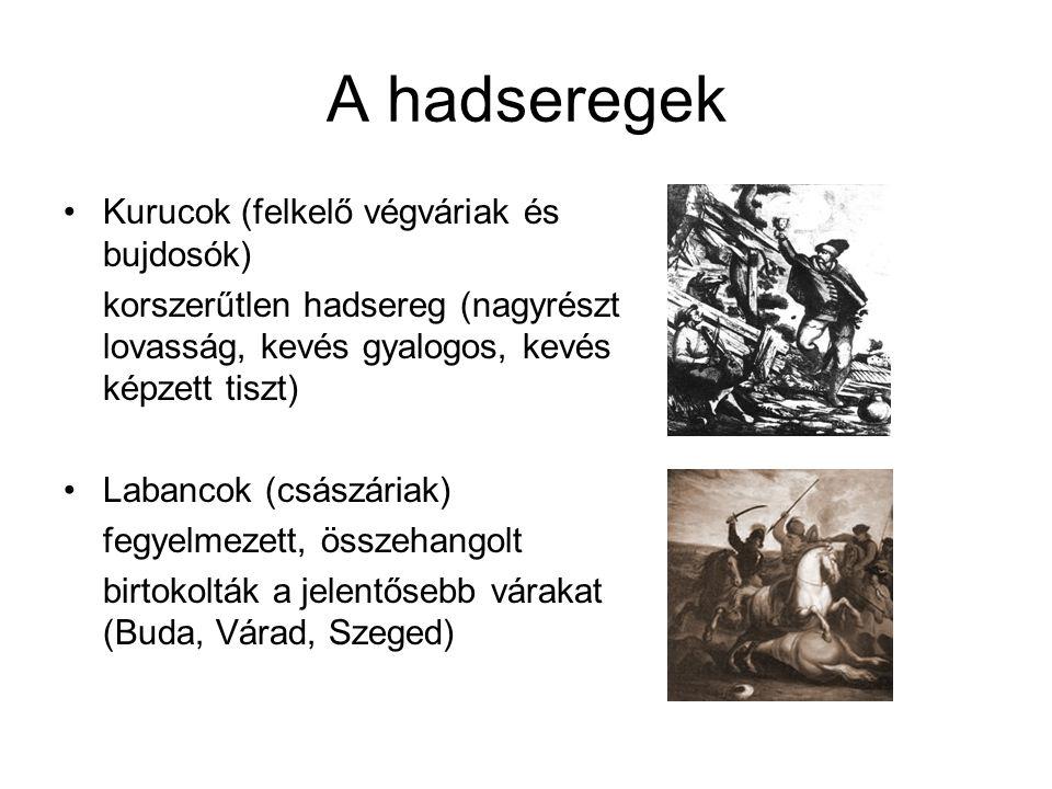 A hadseregek Kurucok (felkelő végváriak és bujdosók) korszerűtlen hadsereg (nagyrészt lovasság, kevés gyalogos, kevés képzett tiszt) Labancok (császár