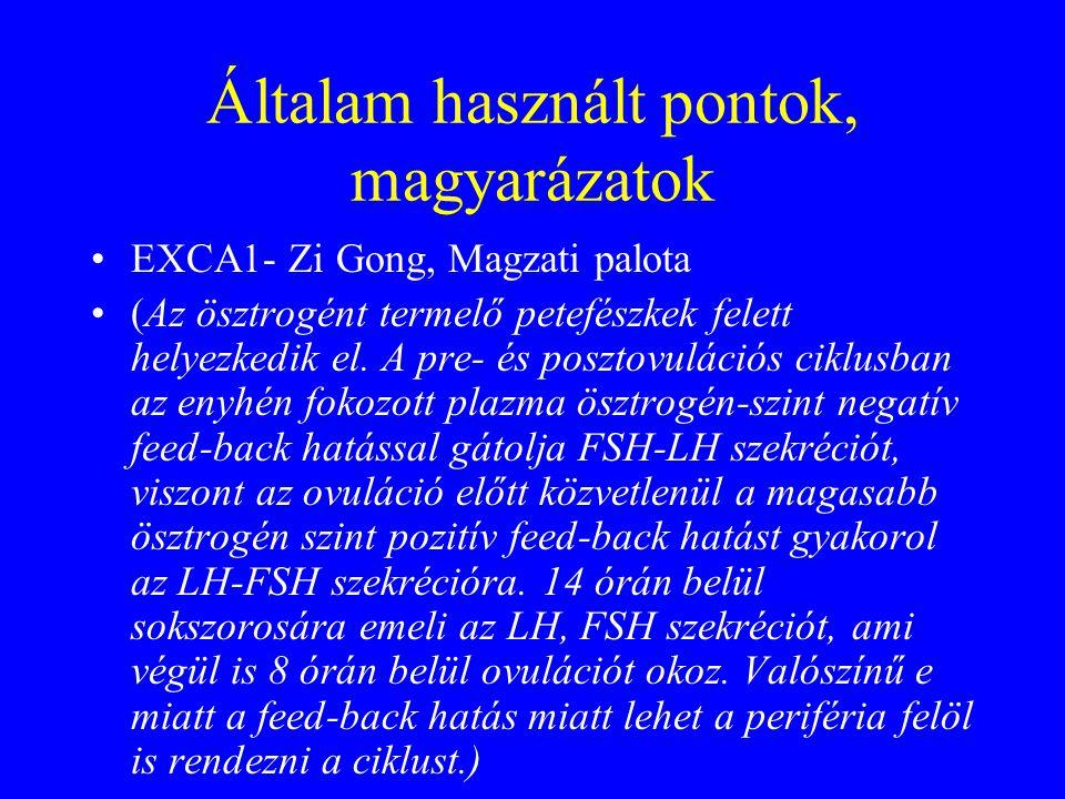 Általam használt pontok, magyarázatok EXCA1- Zi Gong, Magzati palota (Az ösztrogént termelő petefészkek felett helyezkedik el. A pre- és posztovuláció