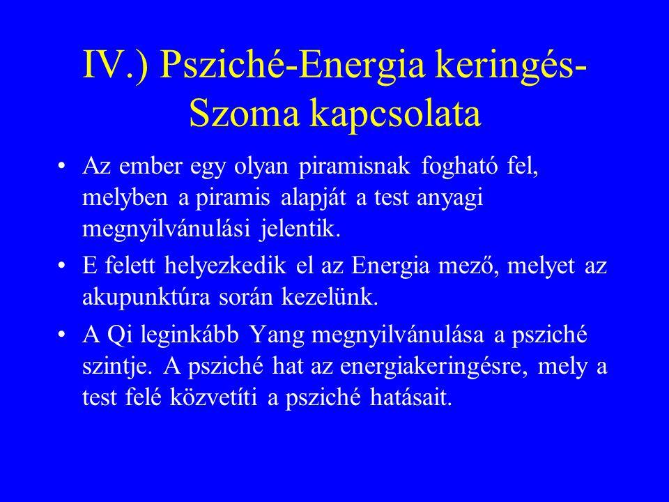 IV.) Psziché-Energia keringés- Szoma kapcsolata Az ember egy olyan piramisnak fogható fel, melyben a piramis alapját a test anyagi megnyilvánulási jel
