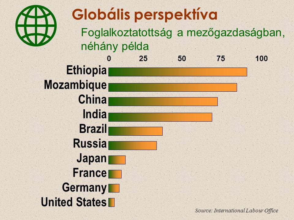 Ethiopia Mozambique China India Brazil Russia Japan France Germany United States 0 25 50 75 100 Globális perspektíva Foglalkoztatottság a mezőgazdaság