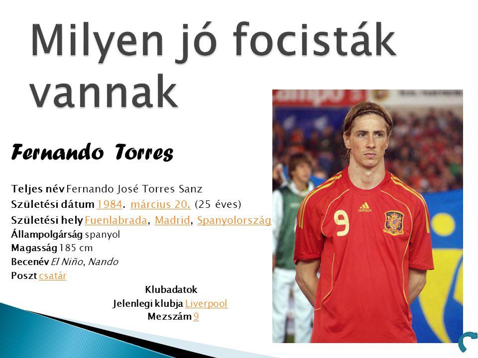 Fernando Torres Teljes név Fernando José Torres Sanz Születési dátum 1984. március 20. (25 éves)1984március 20. Születési hely Fuenlabrada, Madrid, Sp