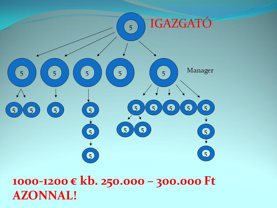 5 55555 55555 5 5 5 5 5 5 5555 IGAZGATÓ Manager 1000-1200 € kb. 250.000 – 300.000 Ft AZONNAL!